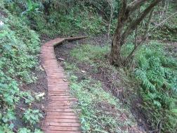 Maunawili Trail Hike 014