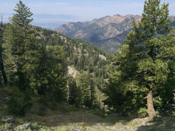 View of Big Cottonwood Canyon